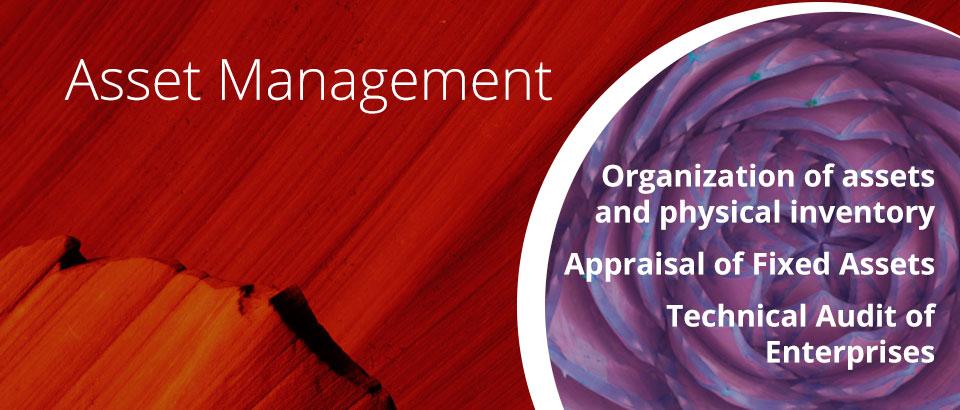 http://www.ecunha.com.br/en/asset-management/